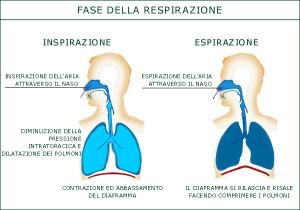 respirazione e diaframma