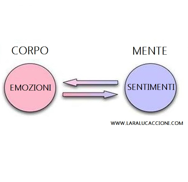 La differenza tra emozioni e sentimenti