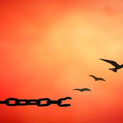Il perdono in otto passi – Esercizi Pratici